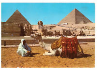 Giza: The Sphinx and The Pyramids of Cheops and Chephren Egypt Rare Postcard