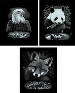 Wildtiere 3er Set silber mit Rahmen Kratzbilder Scraper Tiere Kratzbild Panda
