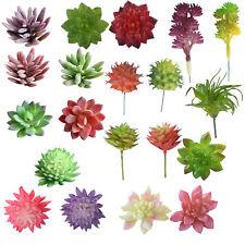 Neu Seerose Künstliche Pflanze Schwimmende Garten Teichpflanze Deko  Kunstblumen