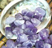 6pc Tumbled Amethyst Quartz Crystal Polished Healing Gemstone Chakra Reiki Love