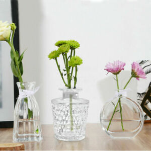 Decorative Flower Vase Small Table Clear Glass Bud Vase Modern Centerpieces DFB