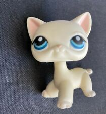 Littlest Pet Shop White Cream Ivory Authentic Shorthair Cat #410 LPS Blue Eyes