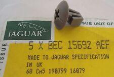 NEW JAGUAR XJS TRUNK LID CARPET OR LINER SIDE FASTENER BEC15692AEF RATTAN