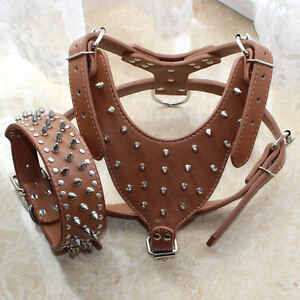 Spiked Studded Large Breed Leather Dog Collar Dog Harness Set for Pitbull Boxer