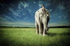 FANTASY ART PRINT Elephant Carry Me Jeffrey Madison
