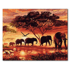 Unframed Animal Art Oil Painting Canvas Picture Home Wall Room Decor Kits New