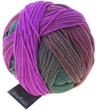 Degradado en 100g de schoppel color 2249 ceremonia del té lana