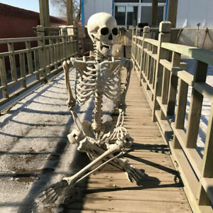 Halloween 170cm Poseable Full Life Size Human Skeleton Skeleton Bone Party Decor