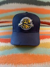 Charleston Riverdogs Cap MiLB Adjustable Sports Hat
