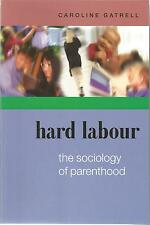 Caroline Gatrell Hard Labour Sociology Of Parenthood  Open University Press 2005