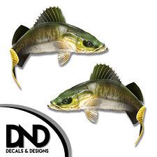"Walleye - Fish Decal Fishing Tackle Box Bumper Sticker ""5in SET"" F-1100 D&"