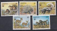 Lesotho 1977 Protezione animali  MNH