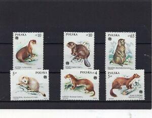 POLAND 1984 WILD ANIMALS SET OF 6 STAMPS MNH