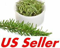 Rosemary 10 Fresh Cuttings 100% Organic, Cut to Order for planting or Culinary