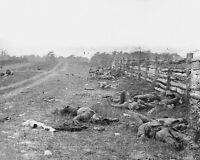 New Civil War 8x10 Photo - Dead Confederate soldiers on Hagerstown Road Antietam