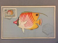 Unusual Mozambique Postal History : Maximum card Stamp 1952 : Coral Fish $10 #02