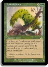 *CARTAPAPA* MAGIC MTG. Limon Ancien / Ancient Ooze. RARE FLEAU