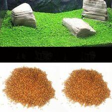Aquarium Grass Seeds Fish Tank Foreground Plant Carpet Grow Water Glossostigma