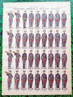 XIX ème- Indo- Tirailleurs Tonkinois Chas Annamites Superbe Planche 40x29 N°139