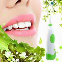 Rotating Anti Slip Waterproof Electric Toothbrush with 2 Brush Heads Green