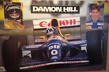 Damon Hill F1 Williams Renault 1994 1st On Ebay! Car Poster!! Own It!