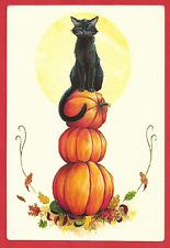Halloween, Cute Black Cat on The Pumpkins, Postcard