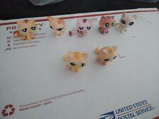Lps Littlest Pet Shop Mixed cat kitten Lot of 7 short long hair tabby