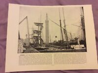 Antique Book Print - Grimsby OR Carlingford - UK - c. 1895