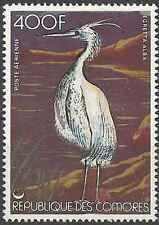 Timbre Oiseaux Comores PA130 ** lot 15972