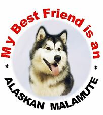 2 Alaskan Malamute Car Stickers by Starprint