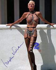 """Brigitte Nielsen Signed 8""""x 10"""" Sexy Color PHOTO REPRINT"""