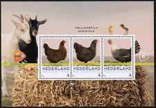 Beursvelletjes; HollandFila, Barneveld 2014; Set 2 postfris
