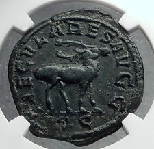 PHILIP I the ARAB Sestertius 1000 Years of Rome Colosseum Animal Coin NGC i60394