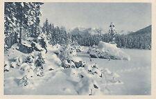 SW Ansichtskarte von Hintersee im Winter  (230)