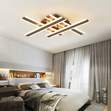 Acrylic LED Iron Painted Ceiling Light Remote Dimmable Lights Living Room Lamp