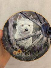 Danbury Mint Wild Wild Westie West Highland Terrier Plate by Paul Doyle Westie
