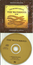 Mike Scott the WATERBOYS Medicine Bow w/ RARE EDIT UK Made PROMO DJ CD single