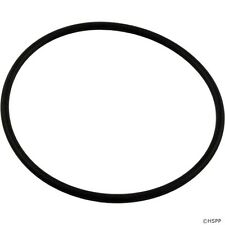 Pentair Superflo Swimming Pool Pump Lid Cover Replacement O-Ring Part 357255