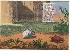 CARTE MAXIMUM FDC 1978 TIMBRE N° 2024 LE LIEVRE ET LA TORTUE