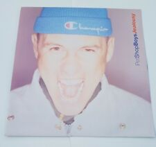 "PET SHOP BOYS-LA GELOSIA 12"" Vinile Record singolo"