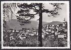 TRENTO COREDO 11 Val di NON Cartolina FOTOGRAFICA viaggiata 1965