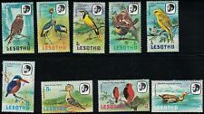 Lesotho 321-334 Beautiful Birds -RockPigeons-CrownedCranes-EgyptianGeese etc.'81