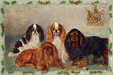 Cavalier King Charles Spaniel Dogs F. Firman 1907 Lg New Blank Xmas Note Cards