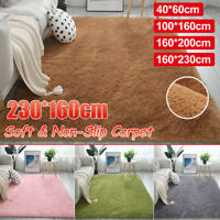 Anti-Skid Fluffy Rugs Shaggy Area Rug Dining Room Carpet Floor Mat Home Bedroom