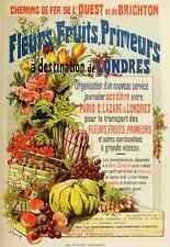 A4 photo FRAIPONT Gustave 1849 1923 LES AFFICHES ILLUSTREES 1886 1895 1896 Fleur