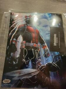 Paul Rudd Signed Autographed Ant-Man movie 8x10 glossy photo with COA Avengers