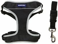 Ancol Dog Padded Car & Walking Harness Travel Seatbelt Clip Lead Safety