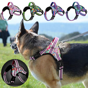Floral Printed Dog Harness Reflective Padded Nylon Walking Vest & Strong Handle