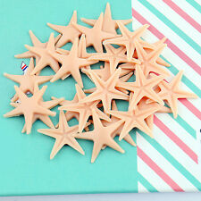 50 Simulation Starfish Decorations Sea Star Crafts Decor For Micro Landscape 2CM