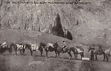Pack Train in Big Horn Mountains near BASIN, Wyoming, 00-10s